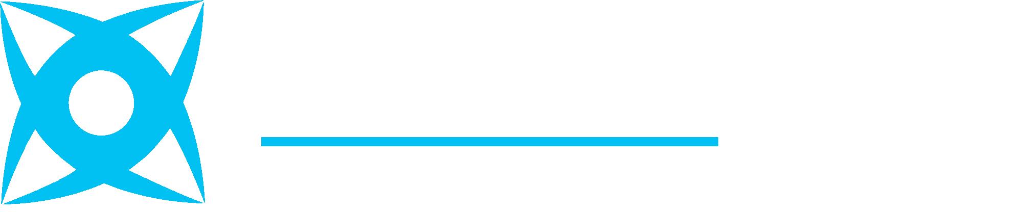 Visionary Pro Digital